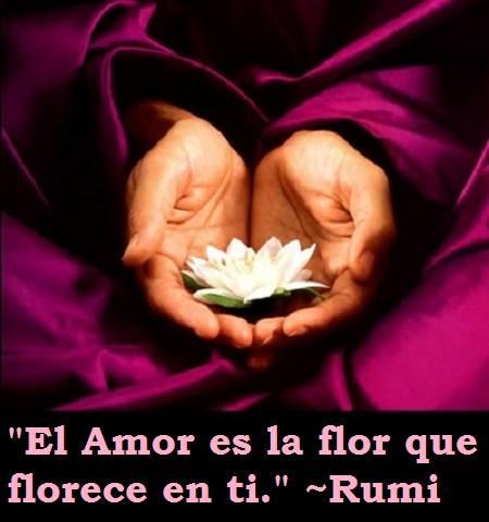 flores de rumi maestri espiritualista